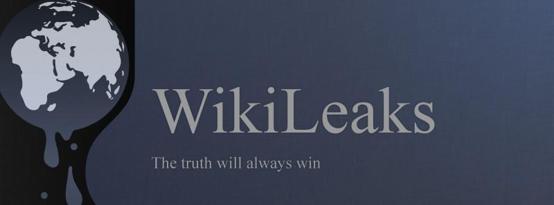 WikiLeaks-Logo-Wallpaper-e1345132156820.jpg